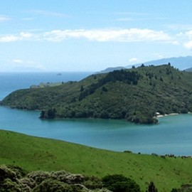 Flights from Whitianga to Auckland, Tauranga and Great Barrier Island by Sunair