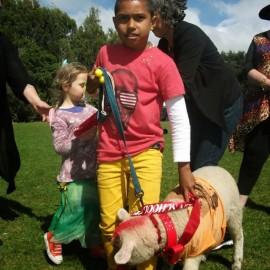Coroglen School Pet Day