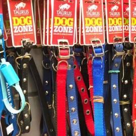 Pet collars