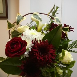Red and white flowers in vase