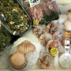Scallops in shell on ice