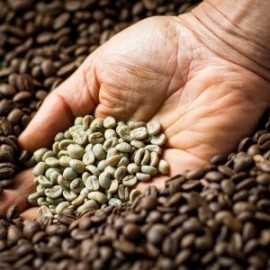 Coffee LaLa '30' hand in coffee beans