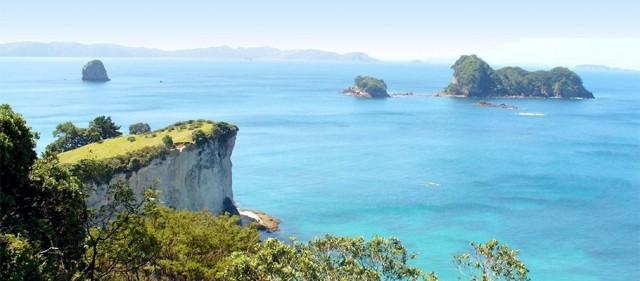 Friends of Te Whanganui-A-Hei Marine Reserve