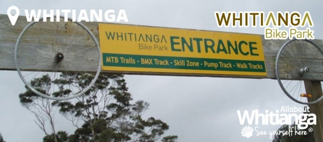 Whitianga Bike Park