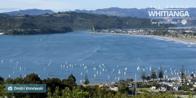 Things to do and see in Whitianga on Anniversary and Waitangi weekend