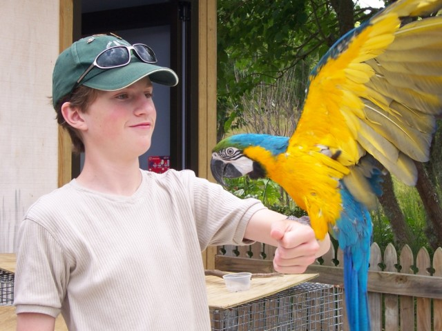 Mill Creek Bird & Animal  Encounters