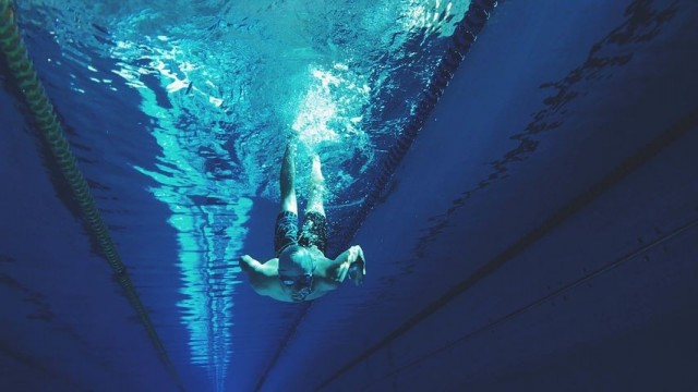 Mercury Bay  Amateur Swimming Club AGM