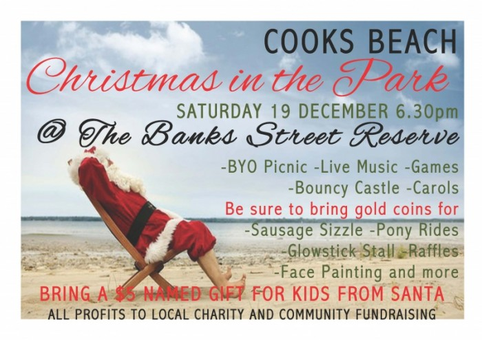 Cooks Beach Christmas in the Park