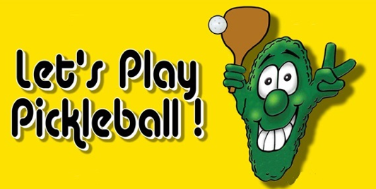 Pickleball Open Day Whitianga - Coaching & Games!
