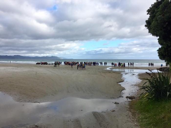 Rings Beach to Matarangi Beach Swim