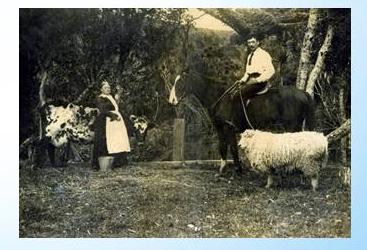 Ladies of the Bay Mecury Bay Yarns Mercury Bay Museum