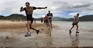 Mercury bay runners club Whitianga kauri run
