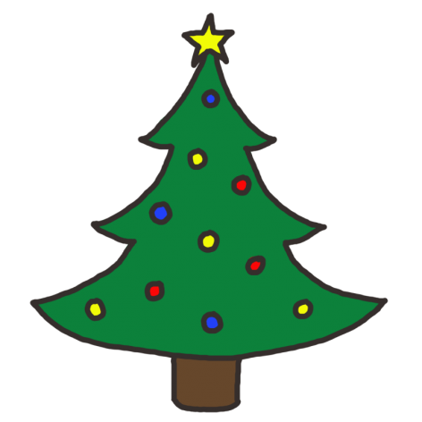 Christmas Tree fundraiser Whitianga Lions Club
