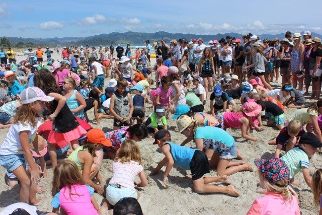 Big Dig Matarangi Beach Summer Festival